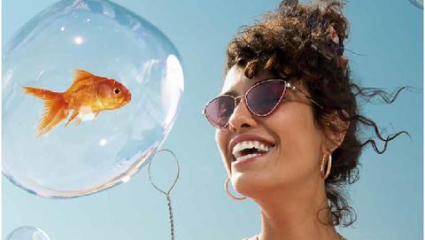 Organism, Fish, Vacation,
