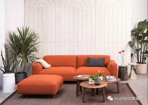 Living room, Couch, Furniture, Room, Interior design, Orange, Houseplant, Wall, Sofa bed, Table,