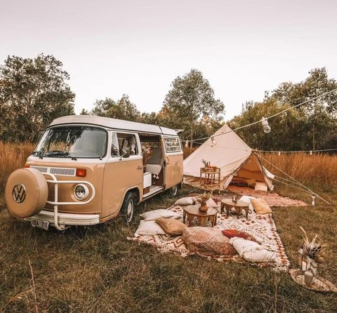 Motor vehicle, Car, Vehicle, Tree, Grass, Wheel, Woody plant, Automotive exterior, Rural area, Classic,