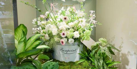 bonpoint开启挚爱花境限时体验店