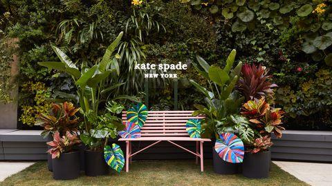 Flower, Garden, Botany, Plant, Botanical garden, Table, Furniture, Bench, Landscape, Plant community,