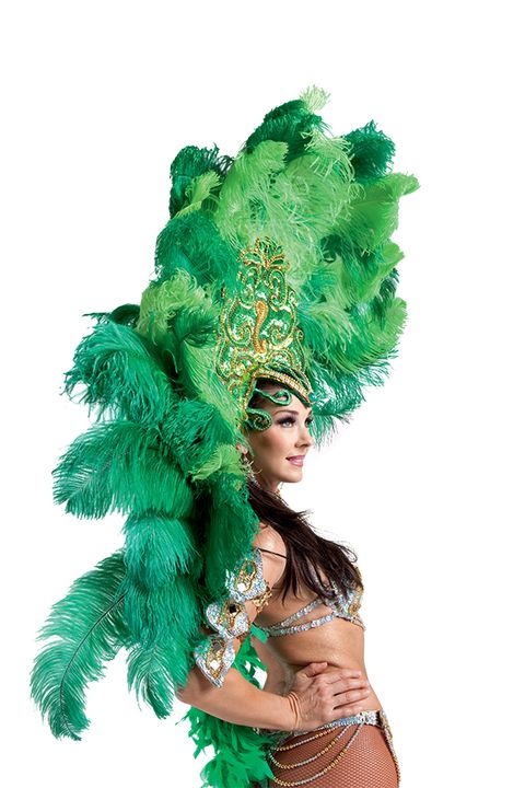 Feather, Green, Feather boa, Samba, Headpiece, Carnival, Costume accessory, Fashion accessory, Dance, Event,