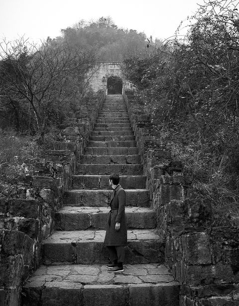 White, Black, Black-and-white, Monochrome, Monochrome photography, Wall, Ancient history, Tree, Ruins, Stairs,