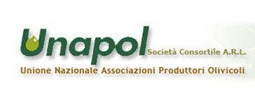 Text, Font, Green, Logo, Line, Brand, Graphics, Trademark,