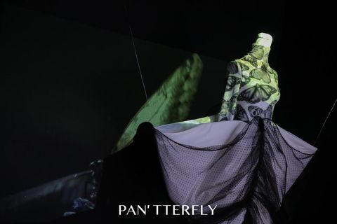 pan'tterfly