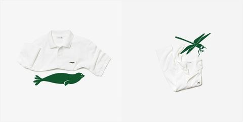 White, Green, Amphibian, Sleeve, T-shirt, Lizard, Polo shirt, Illustration, Reptile,